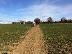 fieldpath.jpg