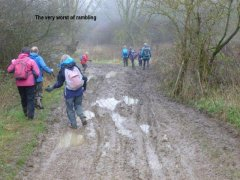 muddypaths.jpg
