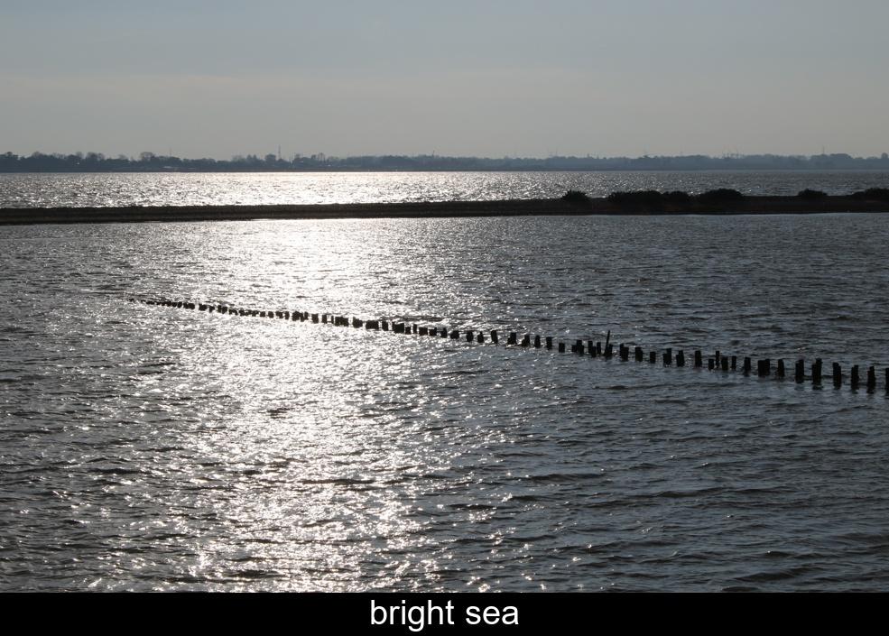 bright-sea.jpg