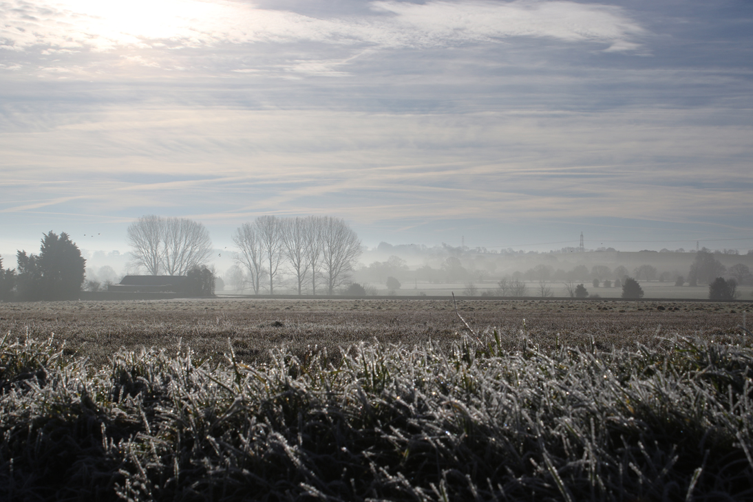 frost-and-mist.jpg