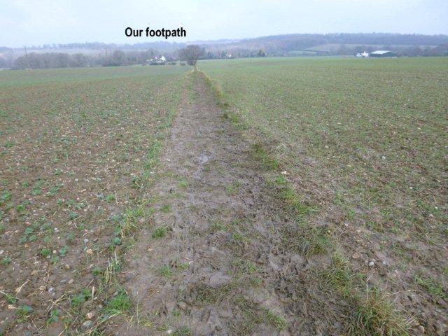 muddycrossfieldpath.jpg
