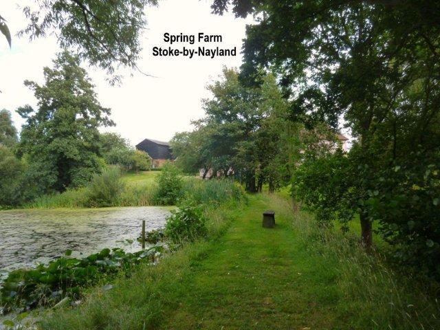 spring-farm.jpg