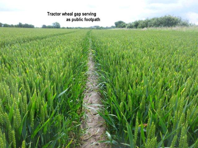 tractor-track.jpg