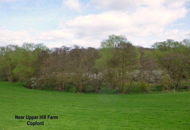 uooerhillfarm.jpg